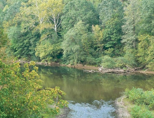 Reflecting on the Elk River incident