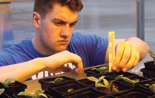 Tyler Barrows measuring seedling growth